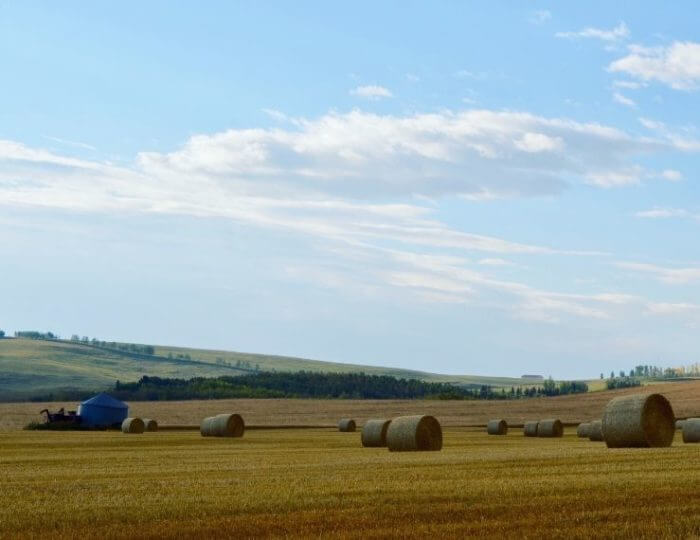 a photo of hay bales and a small granary silo in a field in the autumn under a blue and partly cloudy sky