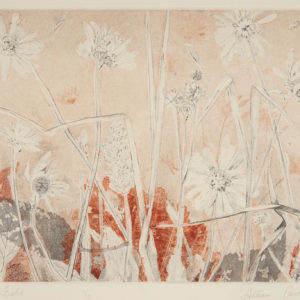 "Lillian Parker ""Daisy Field"" Etching, N.D."